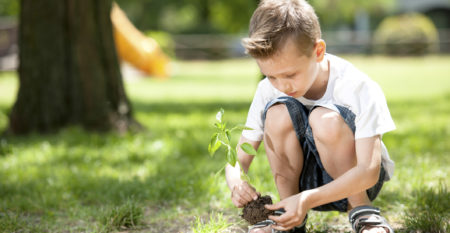 education WordPress theme – tree planting event